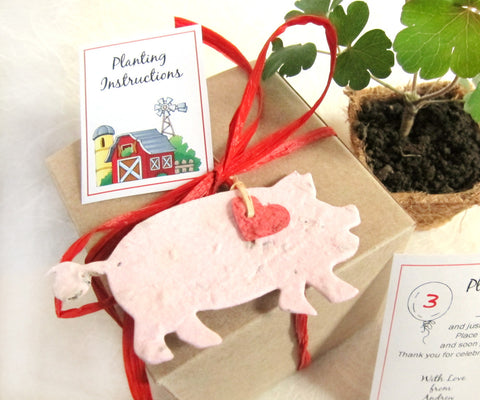 Recycled Ideas Favors plantable paper farm animals box set with plantable pots flower seed pigs chicks lambs rabbits