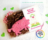 Recycled Ideas Favors plantable paper pig with cards and gift box
