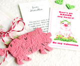 Recycled Ideas Favors plantable paper pig with cards and gift bag