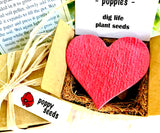 Poppy Seed Starting  Kit with Plantable Paper and Pot
