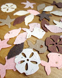 recycledideas plantable paper confetti shells pink starfish brown sand dollars recycled ideas
