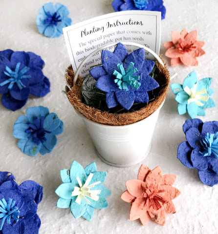 Recycled Ideas Favors blue forget me nots flower seed paper in a white tin pail