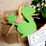 Recycled Ideas Favors plantable paper green squirrel with card and gift box