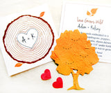 Recycled Ideas Favors plantable paper tree with cards, hearts