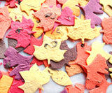 Recycled Ideas Favors plantable paper fall color leaves