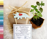 Recycled Ideas Favors plantable paper triceratops with card, plantable pot and box