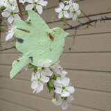 Recycled Ideas Favors plantable paper light green dove