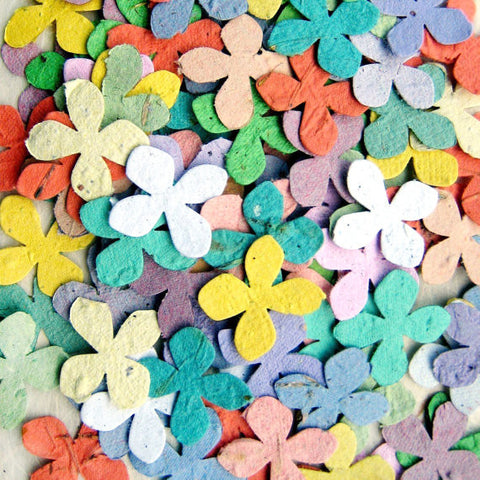 Recycled Ideas Favors Plantable Seed Paper Rainbow Colored Flower Confetti