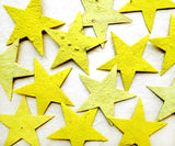 Recycled Ideas Favors plantable paper yellow stars