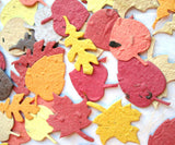 Recycled Ideas Favors plantable paper leaves in autumn colors
