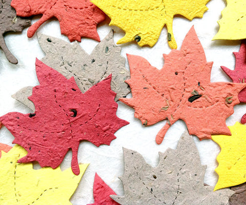 Recycled Ideas Favors plantable paper maple leaves in fall colors
