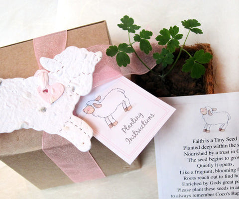 Recycled Ideas Favors plantable paper white lamb with pot, cards and gift box