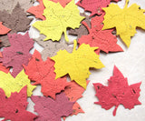 Plantable paper maple leaves in fall colors