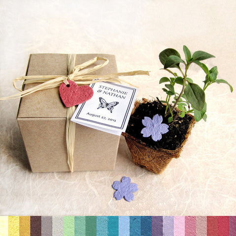 Recycled Ideas Favors plantable paper flowers and heart with card and box