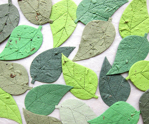 100 Seed Paper Birch Leaves - Plantable Wedding Favor Decor - Option for Plantable Pots and Cards