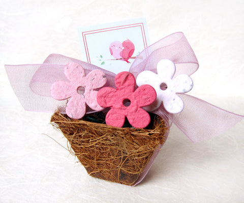 Recycled Ideas Favors plantable paper daisies with pot, ribbon and card