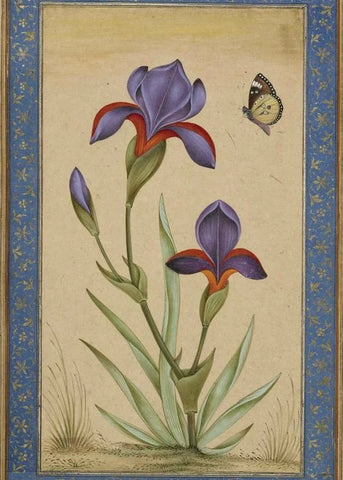 Indian Miniature Paintings Mughal Floral