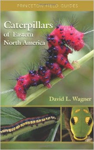 Book: Caterpillars of Eastern North America: A Guide to Identification and Natural History