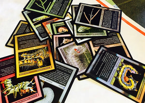Caterpillar Trading Cards - 10 sets and 18 cards per set.  Collect all 180!