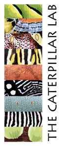 THE CATERPILLAR LAB Poster  13x30""