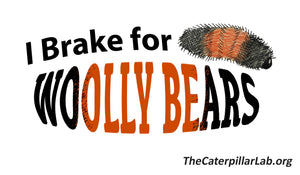 """I BRAKE FOR WOOLLY BEARS"" Bumper Sticker"
