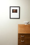 Framed Print - Artifacts of the Garibaldi