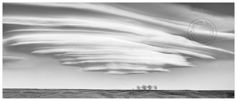 Framed Limited Edition Print - Lenticular Cloud, Wedderburn