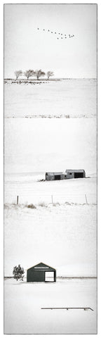 Unframed Photographic Print - Winter at Wedderburn