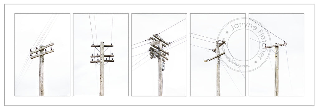 Framed Photographic Print - Telegraph Poles at Hyde