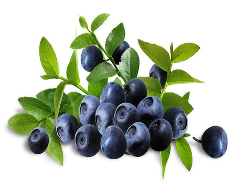 Blueberry Candy e-liquid
