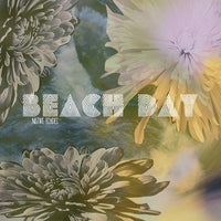 Beach Day - Native Echoes cd/lp