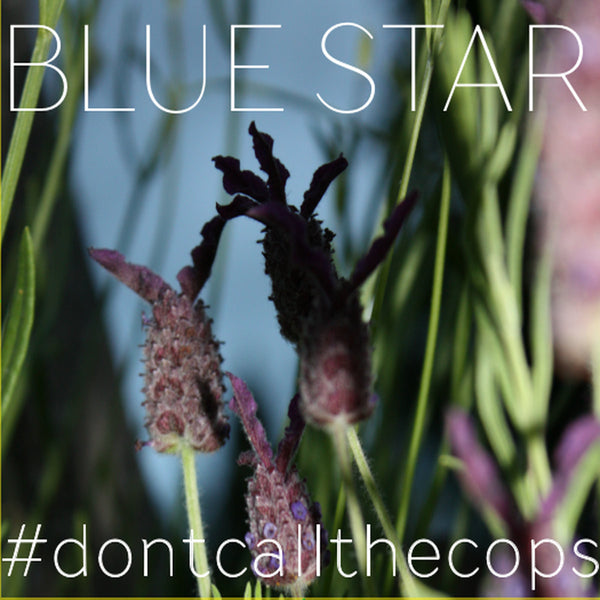 Blue Star - Don't Call The Cops cd