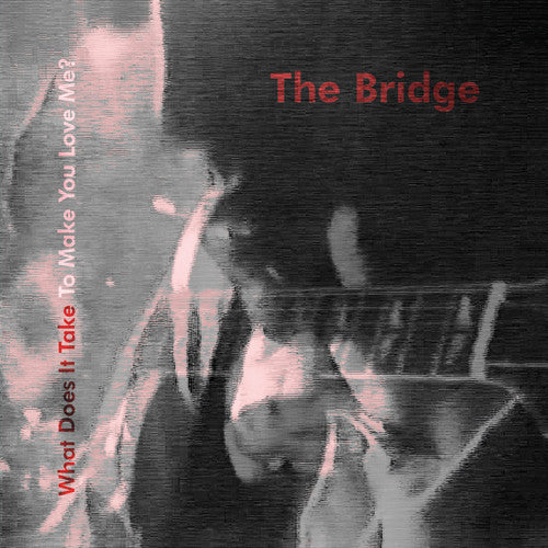 Bridge - What Does It Take To Make You Love Me? cd/lp