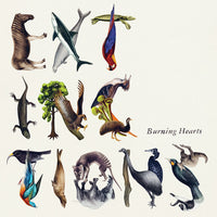 Burning Hearts - Extinctions cd