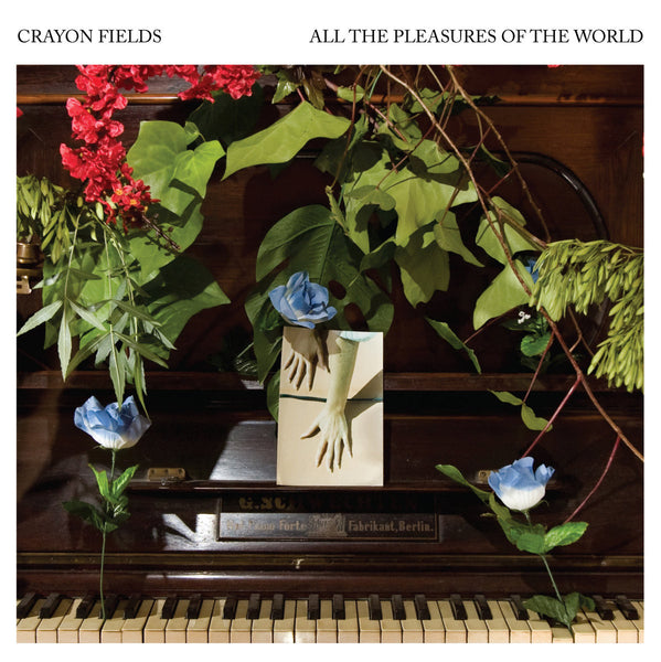 Crayon Fields - All The Pleasures Of The World cd/lp