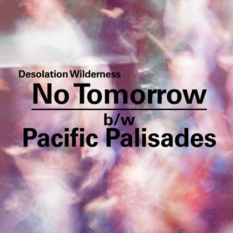 Desolation Wilderness - No Tomorrow 7""