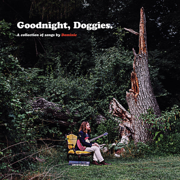 Angelella, Dominic - Goodnight, Doggies lp