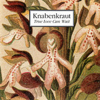 Knabenkraut - True Love Can Wait cd