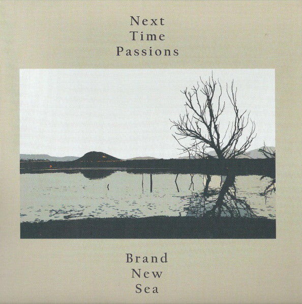 Next Time Passions - Brand New Sea 7""