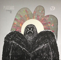 Plateaus - Wasting Time EP 10""
