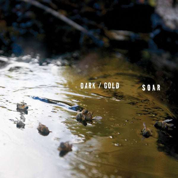 Soar - Dark/Gold lp