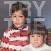 Try The Pie - Domestication lp