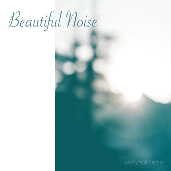 Various - Beautiful Noise cd/cs