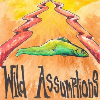 Wild Assumptions - Run Like You 7""