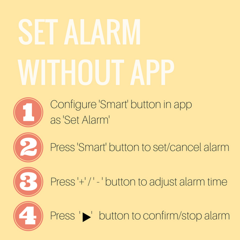Set Manual Alarm without App