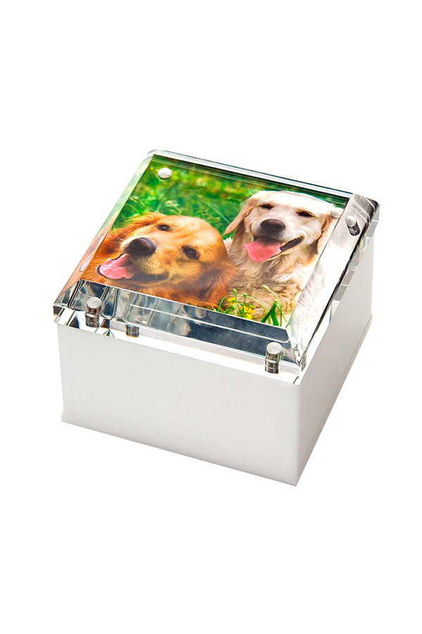 Lucite Photo Box Small (Multiple Colors)