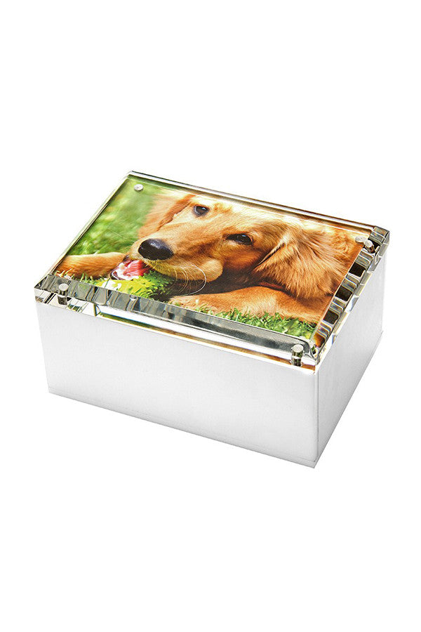 Lucite Photo Box Medium (Multiple Colors)