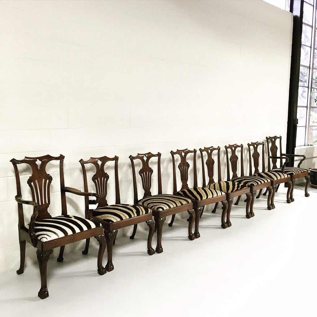 George II Walnut Dining Chairs in South African Zebra Hide - Set of 8 - FORSYTH