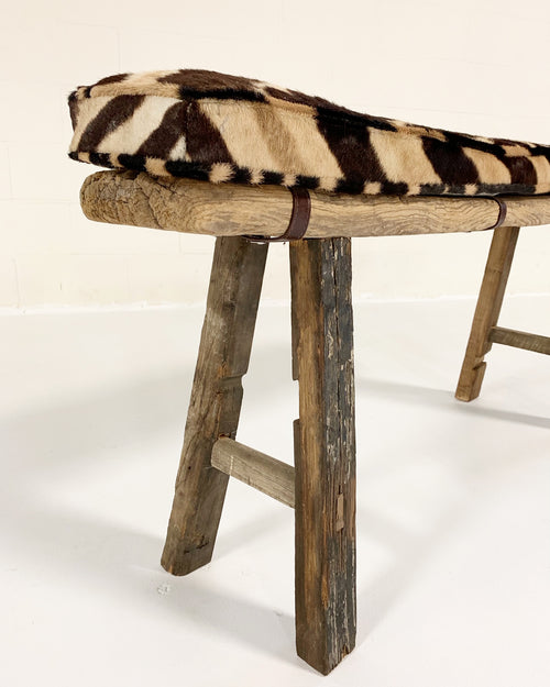 Chinese Elmwood Bench with Zebra Cushion - FORSYTH