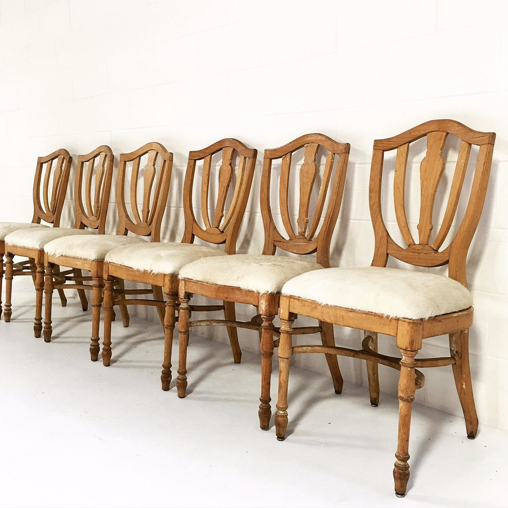 Vintage Maple Dining Chairs in Brazilian Ivory Cowhide - Set of 6 - FORSYTH  sc 1 st  FORSYTH & Vintage Maple Dining Chairs in Brazilian Ivory Cowhide - Set of 6 ...